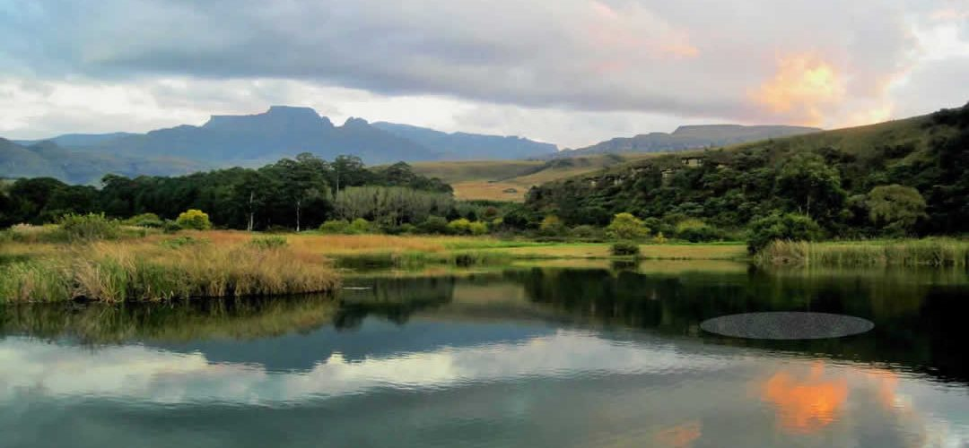 Peak O2 Large Pond Systems
